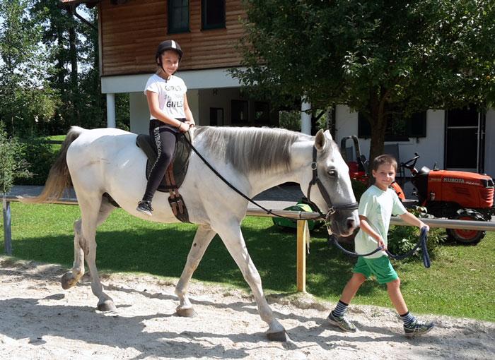 Pferdetag am Hammerwiesenhof