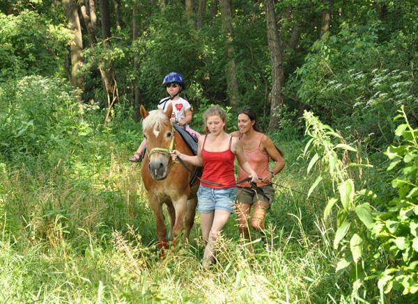 Heilpädagogische und Therapeutische Förderung mit dem Pferd