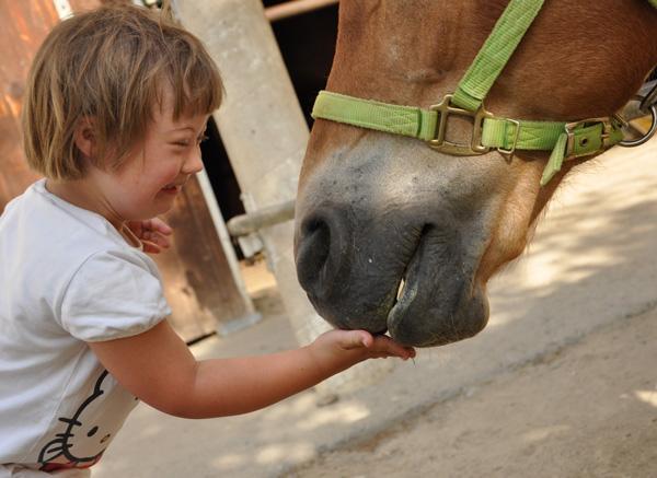 Heilpädagogische und Therapeutische Förderung mit dem Pferd am Hammerwiesenhof