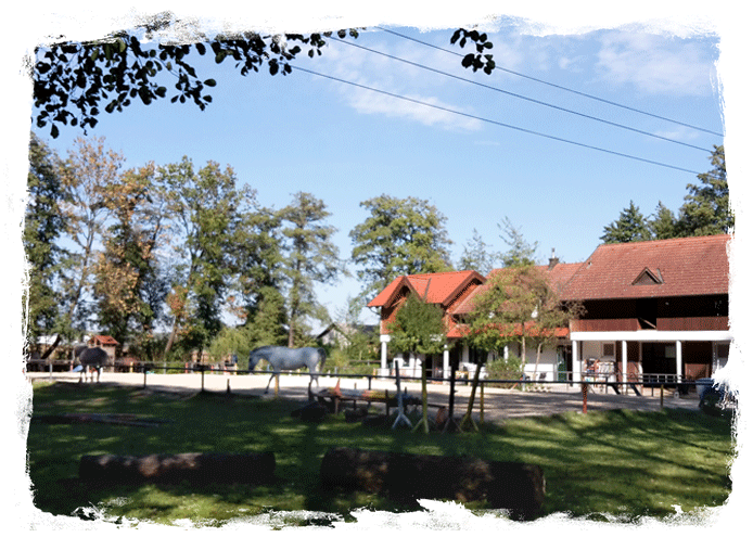 Hammerwiesenhof