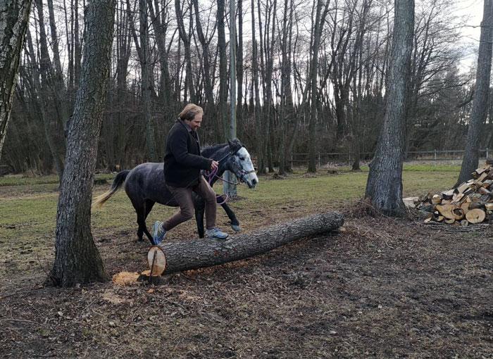 Günther beim Training mit Jaqueta