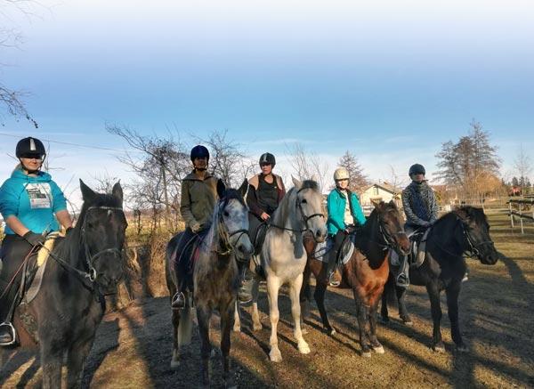 Ausritt mit allen fünf Pferden vom Hammerwiesenhof