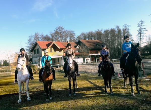 Ausreiten mit allen fünf Pferden vom Hammerwiesenhof