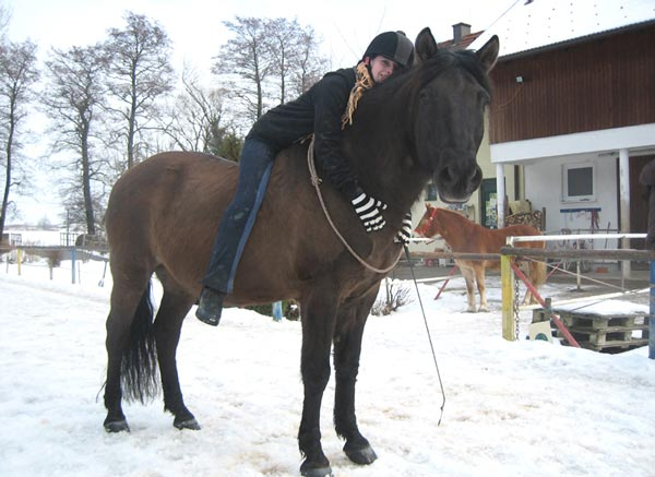 Kuscheln mit Peppino am Hammerwiesenhof