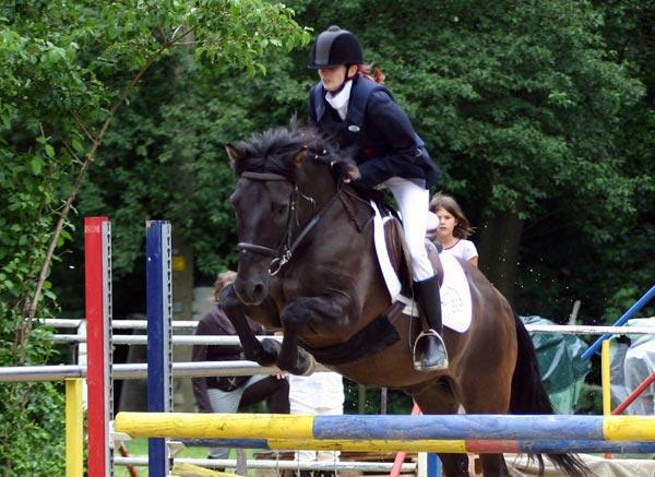 Alina mit dem Huzulen Peppino über einem Oxer bei der Reiternadel am Hammerwiesenhof